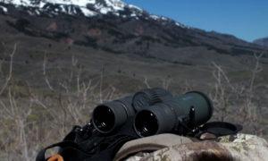 vortex-razor-hd-10x42-binoculars-pack5-l