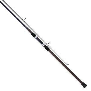 Tica UEHA Series Surf Spinning Fishing Rod